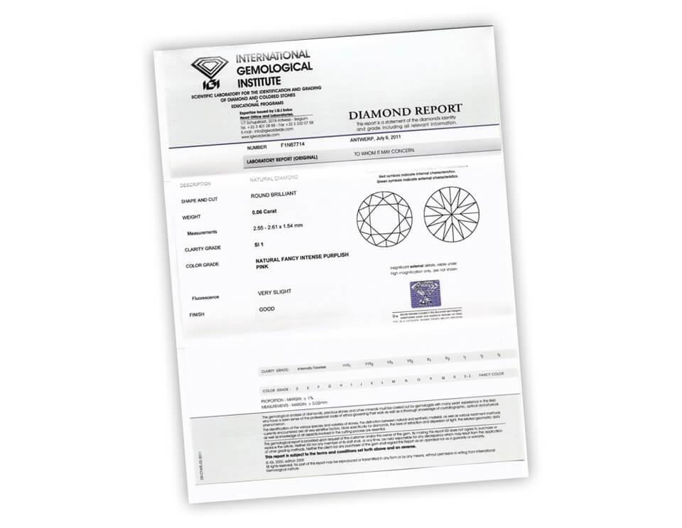 Exemple de certificat IGI